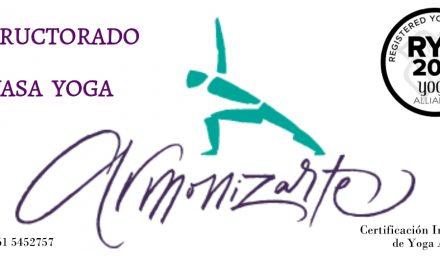 Buscás clases para perfeccionarte en estilos de Yoga? Esta info es para vos!!